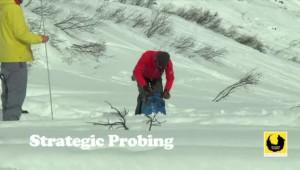Как да ползваме лавинна сонда